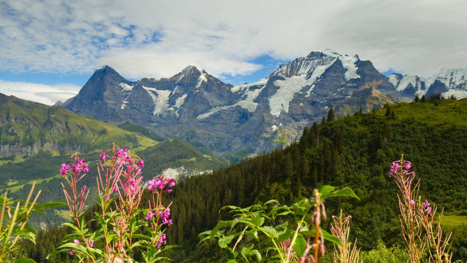 Eiger Jungfrau Zwitserland