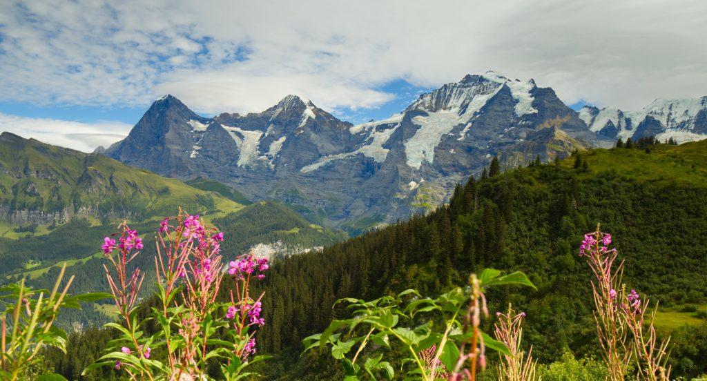 uitzicht mountain view trail jungfrau lauterbrunnen mürren.jpg